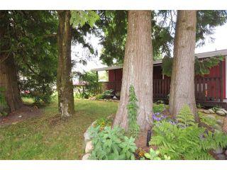 Photo 13: 11808 HAWTHORNE ST in Maple Ridge: Cottonwood MR House for sale : MLS®# V1065265