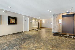 Photo 11: 101 1031 173 Street SW in Edmonton: Zone 56 Condo for sale : MLS®# E4223947