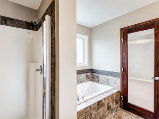 Photo 30: 29 SILVERADO SADDLE Heights SW in Calgary: Silverado Detached for sale : MLS®# A1009131