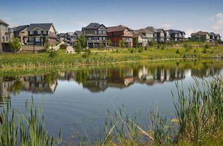 Photo 9: 3675 KESWICK Boulevard in Edmonton: Zone 56 House for sale : MLS®# E4243312