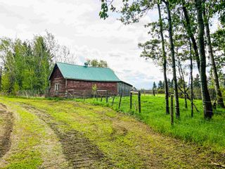Photo 36: 454064 RGE RD 275: Rural Wetaskiwin County House for sale : MLS®# E4246862
