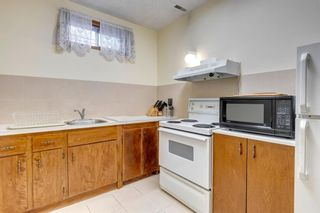Photo 25: 147 Templevale Place NE in Calgary: Temple Detached for sale : MLS®# A1144568