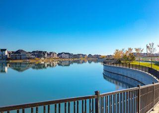 Photo 40: 291 Mahogany Manor SE in Calgary: Mahogany Detached for sale : MLS®# A1079762