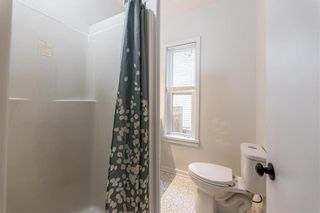 Photo 15: 199 Arlington Street in Winnipeg: Wolseley Residential for sale (5B)  : MLS®# 202120500