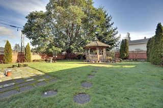 Photo 15: 713 Kelly Rd in Victoria: Residential for sale : MLS®# 279959