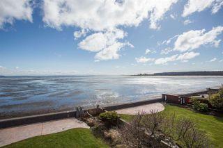 Photo 7: 1584 BEACH GROVE Road in Delta: Beach Grove House for sale (Tsawwassen)  : MLS®# R2575958