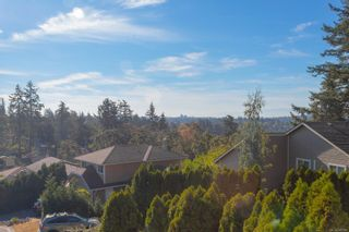 Photo 43: 1225 Tall Tree Pl in : SW Strawberry Vale House for sale (Saanich West)  : MLS®# 885986