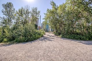 Photo 37: 231 222 RIVERFRONT Avenue SW in Calgary: Chinatown Apartment for sale : MLS®# A1091480
