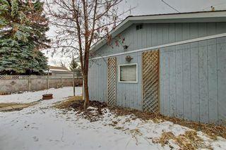 Photo 40: 283 QUEENSLAND Circle SE in Calgary: Queensland Detached for sale : MLS®# C4290754