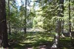 Property Photo: Strata Lot 8 5373  Sunnybrae Canoe Point  RD in Tappen