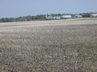 Photo 2: N/A: Olds Land for sale : MLS®# C4185110