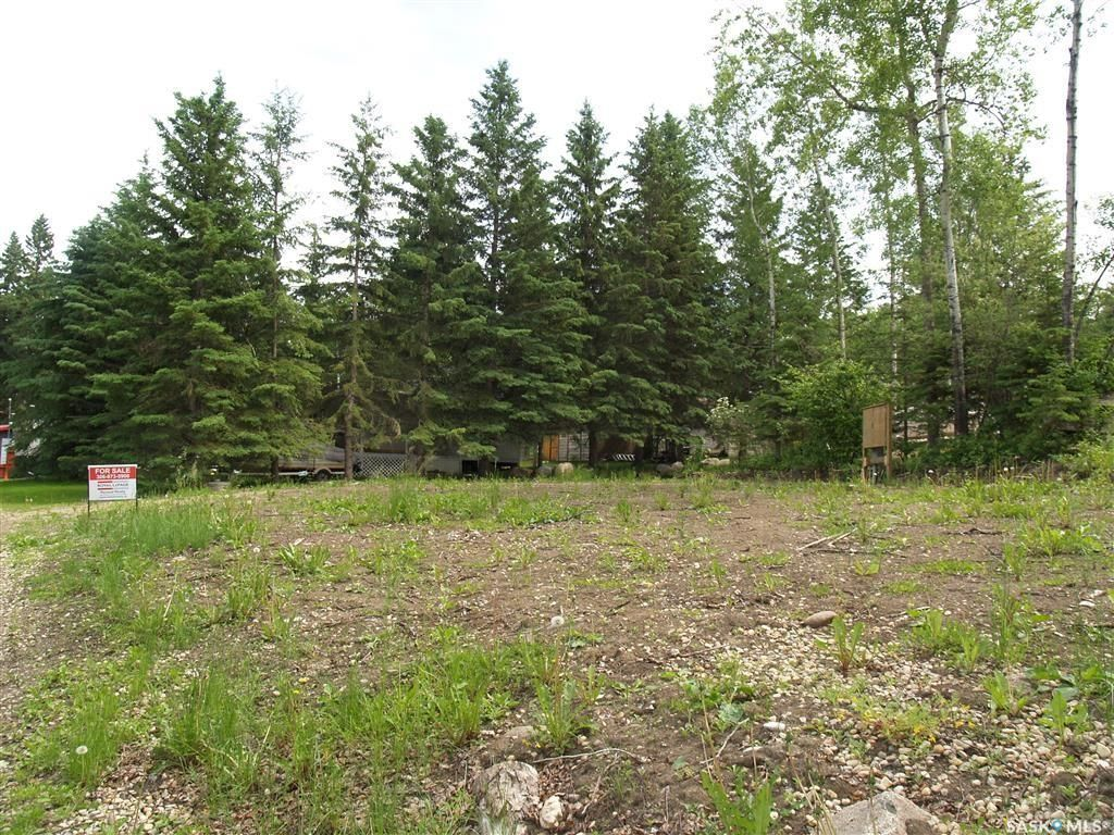 Main Photo: 11 Spruce Drive in Bjorkdale: Lot/Land for sale (Bjorkdale Rm No. 426)  : MLS®# SK855919
