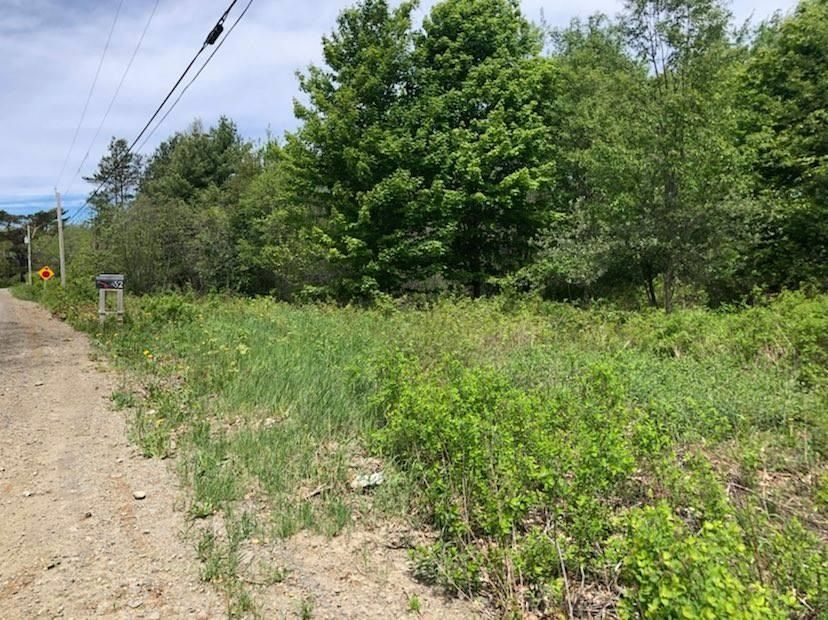 Main Photo: Lot Morganville Road in Morganville: 401-Digby County Vacant Land for sale (Annapolis Valley)  : MLS®# 202105239