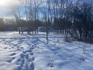 Photo 3: 5303 48 Street: Alix Residential Land for sale : MLS®# A1069835