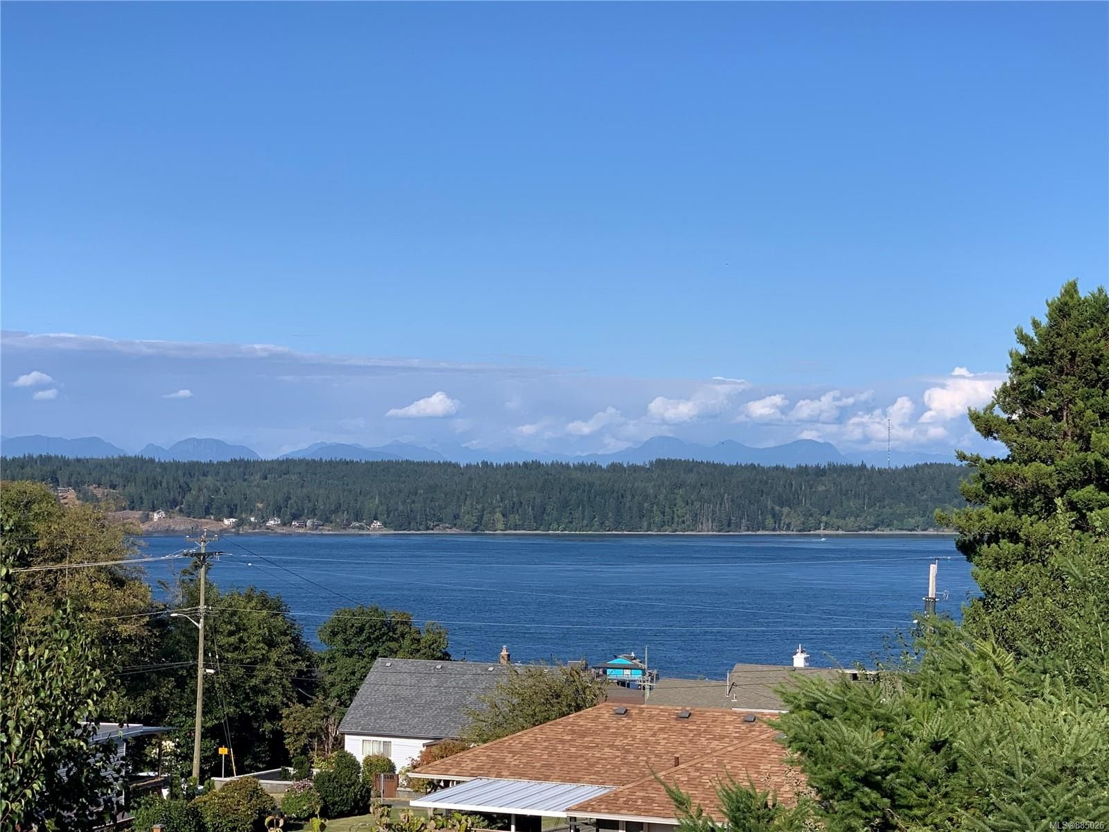 Main Photo: 589 Birch St in : CR Campbell River Central House for sale (Campbell River)  : MLS®# 885026