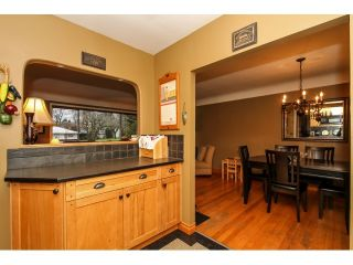 """Photo 7: 22078 CLIFF Avenue in Maple Ridge: West Central House for sale in """"WEST CENTRAL"""" : MLS®# V1103896"""