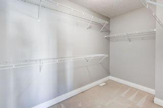 Photo 22: 158 Saddlemont Boulevard NE in Calgary: Saddle Ridge Detached for sale : MLS®# A1145866