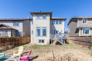 Photo 46: 100 Thornfield Close SE: Airdrie Detached for sale : MLS®# A1094943