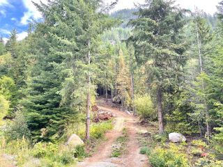Photo 12: 1969 SANDY ROAD in Castlegar: Vacant Land for sale : MLS®# 2461033