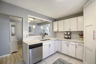 Photo 13: 412 33 Avenue NE in Calgary: Winston Heights/Mountview Semi Detached for sale : MLS®# A1068062