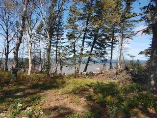 Photo 19: LOTS Sand Bank Road in Victoria Vale: 400-Annapolis County Vacant Land for sale (Annapolis Valley)  : MLS®# 202103631