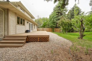 Photo 7: 17428 53 Ave NW: Edmonton House for sale : MLS®# E4248273