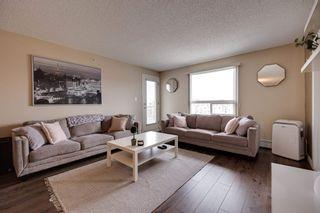 Photo 23: 2408 7343 SOUTH TERWILLEGAR Drive in Edmonton: Zone 14 Condo for sale : MLS®# E4247451