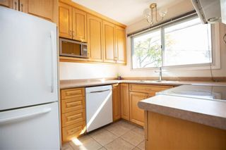 Photo 12: 161 Crestwood Crescent in Winnipeg: Windsor Park Residential for sale (2G)  : MLS®# 202023611
