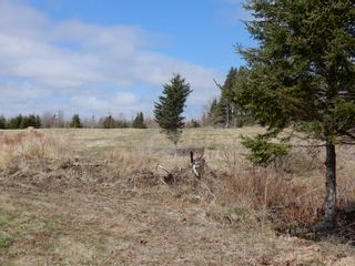 Photo 30: 32 Sutherlands Lane in Scotsburn: 108-Rural Pictou County Farm for sale (Northern Region)  : MLS®# 202108950