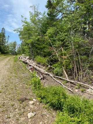 Photo 3: HL-XAC 245 Old Halifax Road in Glen Haven: 40-Timberlea, Prospect, St. Margaret`S Bay Vacant Land for sale (Halifax-Dartmouth)  : MLS®# 202118186
