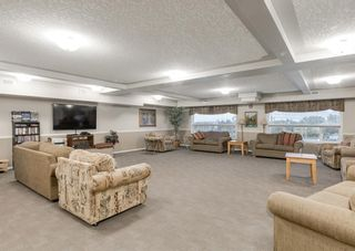 Photo 24: 3229 3229 MILLRISE Point SW in Calgary: Millrise Apartment for sale : MLS®# A1116138