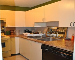 Photo 5: 101 215 N TEMPLETON Drive in Vancouver: Hastings Condo for sale (Vancouver East)  : MLS®# R2202594