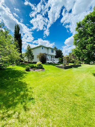 Photo 19: 1008 High Glen Bay NW: High River Detached for sale : MLS®# A1121017