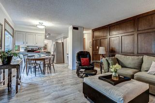 Photo 16: 88 Berkley Rise NW in Calgary: Beddington Heights Detached for sale : MLS®# A1127287