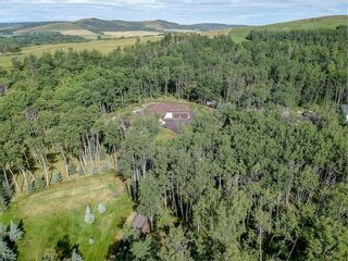 Photo 9: 229051 318 Avenue W: Rural Foothills County Detached for sale : MLS®# A1084268
