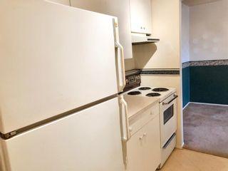Photo 18: 304 647 1 Avenue NE in Calgary: Bridgeland/Riverside Apartment for sale : MLS®# A1061043