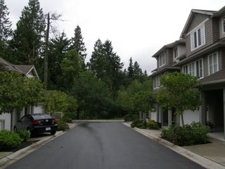"""Photo 6: 3 11160 234A STREET in """"VILLAGE AT KANAKA"""": Home for sale"""