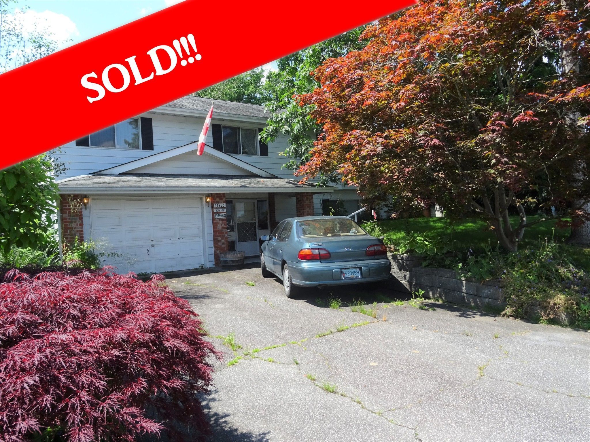 Main Photo: 11825 229TH Street in Maple Ridge: East Central House for sale : MLS®# R2472273