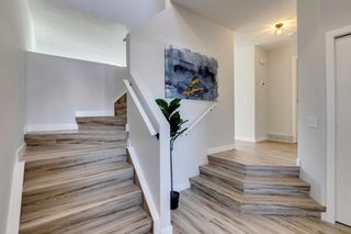 Photo 19: 11 Bridlewood Gardens SW in Calgary: Bridlewood Detached for sale : MLS®# A1149617