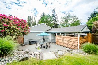 Photo 19: 456 W 24TH Street in North Vancouver: Central Lonsdale House for sale : MLS®# R2458726