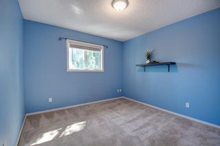 Photo 22: 168 Stonegate Close NW: Airdrie Detached for sale : MLS®# A1137488