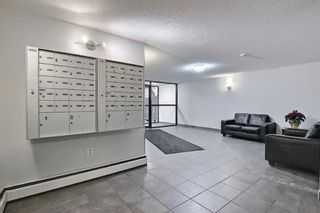 Photo 26: 606 1213 13 Avenue SW in Calgary: Beltline Apartment for sale : MLS®# A1080886