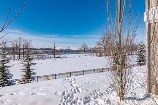 Photo 50: 20 Cranbrook Landing SE in Calgary: Cranston Semi Detached for sale : MLS®# A1069149