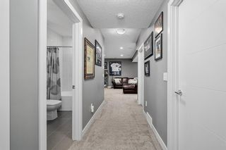 Photo 30: 4438 19 Avenue NW in Calgary: Montgomery Semi Detached for sale : MLS®# A1135824