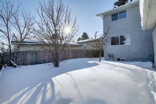 Photo 48: 28 Forest Green SE in Calgary: Forest Heights Detached for sale : MLS®# A1065576