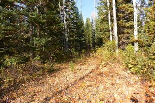 """Photo 5: Lot 8 GLACIER VIEW Road in Smithers: Smithers - Rural Land for sale in """"Silvern Estates"""" (Smithers And Area (Zone 54))  : MLS®# R2410914"""