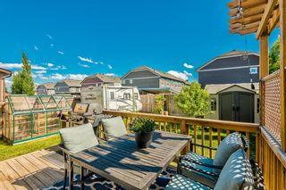 Photo 38: 53 Silverado Skies Drive SW in Calgary: Silverado Detached for sale : MLS®# A1121435