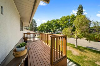 Photo 29: 1931 9A Avenue NE in Calgary: Mayland Heights Detached for sale : MLS®# A1125522
