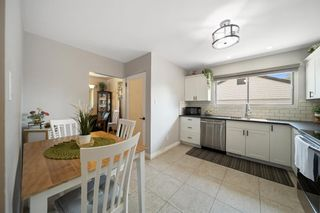 Photo 10: 1931 9A Avenue NE in Calgary: Mayland Heights Detached for sale : MLS®# A1125522