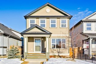 Photo 1: 742 EVERRIDGE Drive SW in Calgary: Evergreen Detached for sale : MLS®# A1061087